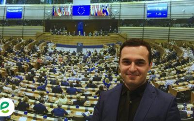 Bunte Liste für Europa –  Grenzenlos Grün