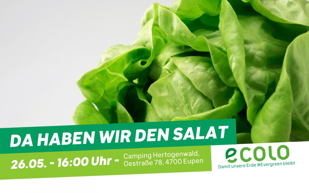 Da haben wir den Salat – Wahlfeier