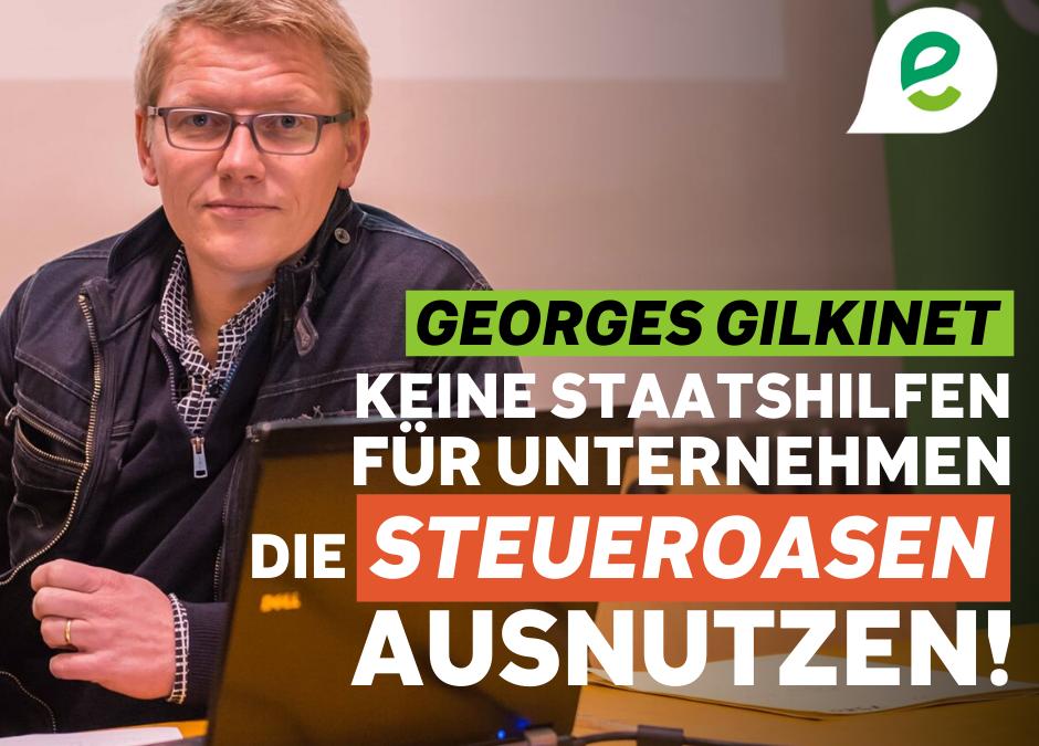 Durch die Grünen knüpft die Kammer staatliche Beihilfen an Bedingungen und bietet den vorübergehend Arbeitslosen zusätzliche Kaufkraft.