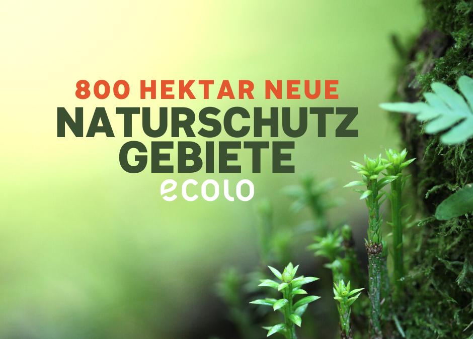 Fast 800 Hektar neue Naturschutzgebiete im Bezirk Verviers