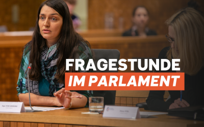 Fragestunde im Parlament vom 25.05.20