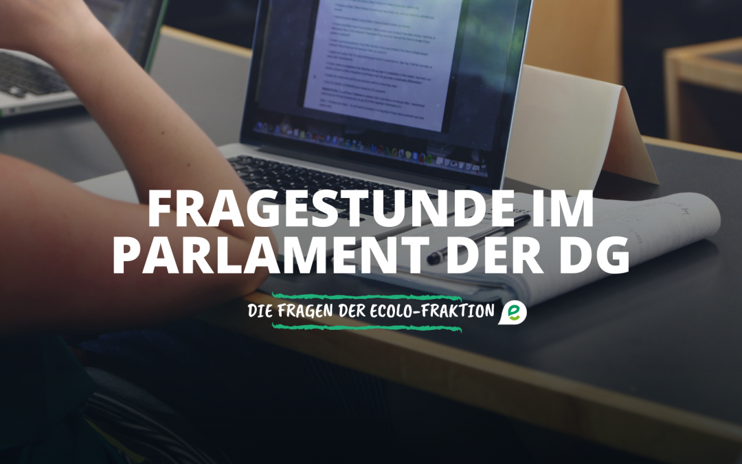 November-Fragestunde im Parlament der DG